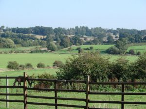 Countryside,_looking_north_east_from_Hessle_Farm_-_geograph.org.uk_-_244618